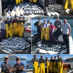 08-05-2018 Coho and King salmon bash extraordinaire!