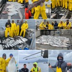 8-17-21 From a 14.9 lb Coho to a Blue Shark and everything in between - What a day!