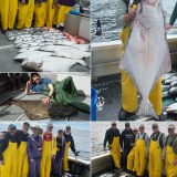 8-5-21 Great Halibut and Coho action!