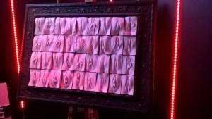 vagina molds