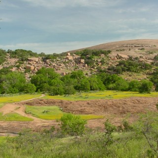 Wildflowers and the pink granite domes of Enchanted Rock. Copyright © Shannon D. Moore.