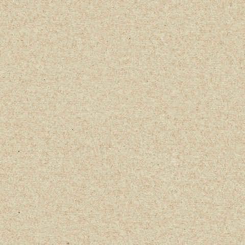 Free high resolution Seamless textures  Wild Textures