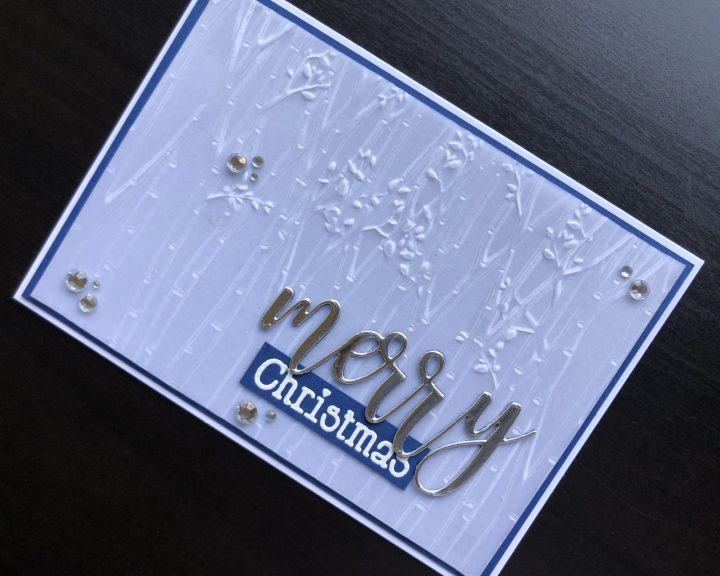 Hand made Christmas card with embossed vellum background and stamped and die cut sentiment