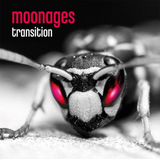 Moonages – Transition