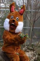 Viele Osteraktionen und Tierbabys im Tierpark Sababurg!