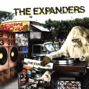 The Expanders - Hustling Culture