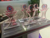 Paderborner FC Bayern München Fanclub gewinnt Telekom Fan-Award 2017!