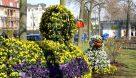 Frühlingserwachen - Bad Wildungen