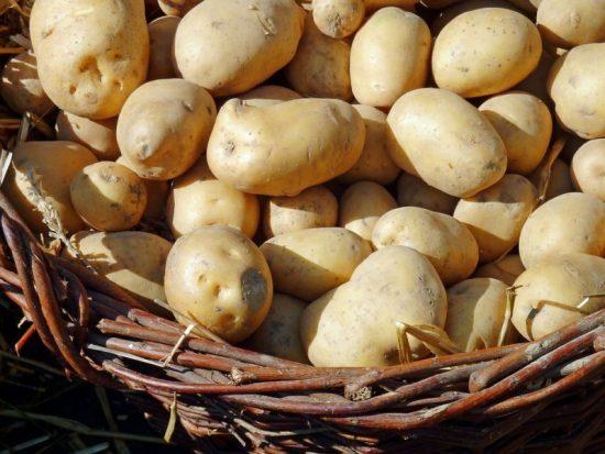 Von Süßkartoffel bis Pommes: Kartoffelfest in Bad Wildungen (Foto: Pixabay)