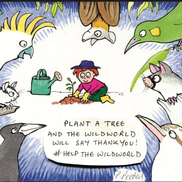 Plant a tree and the Wildworld will say thankyou