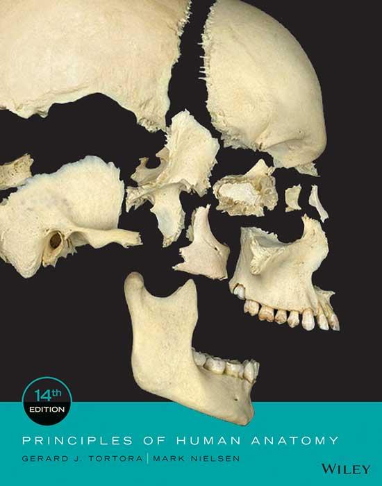 Principles of Human Anatomy, 14th Edition | $65 | Wiley Direct