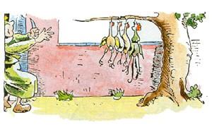 WitweBolte sieht die Hühner