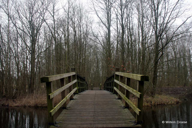 Overbruggen - Willem Croese