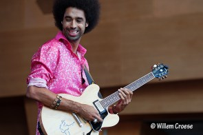 180609_13_640_©_Willem_Croese_Chicago_Blues_Festival