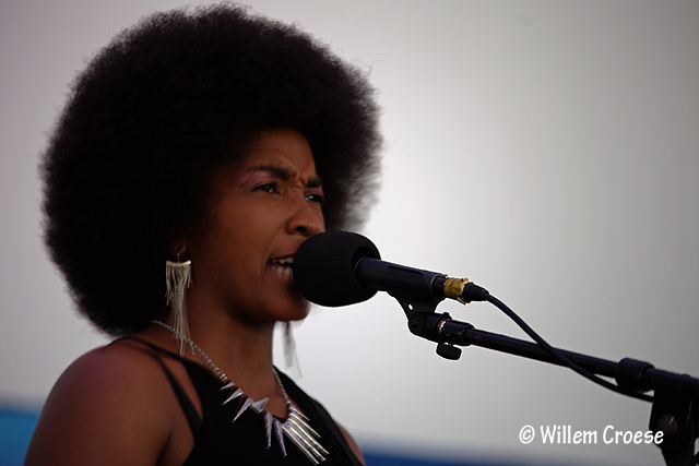 180610_07_©_Willem_Croese_Chicago_Blues_Festival