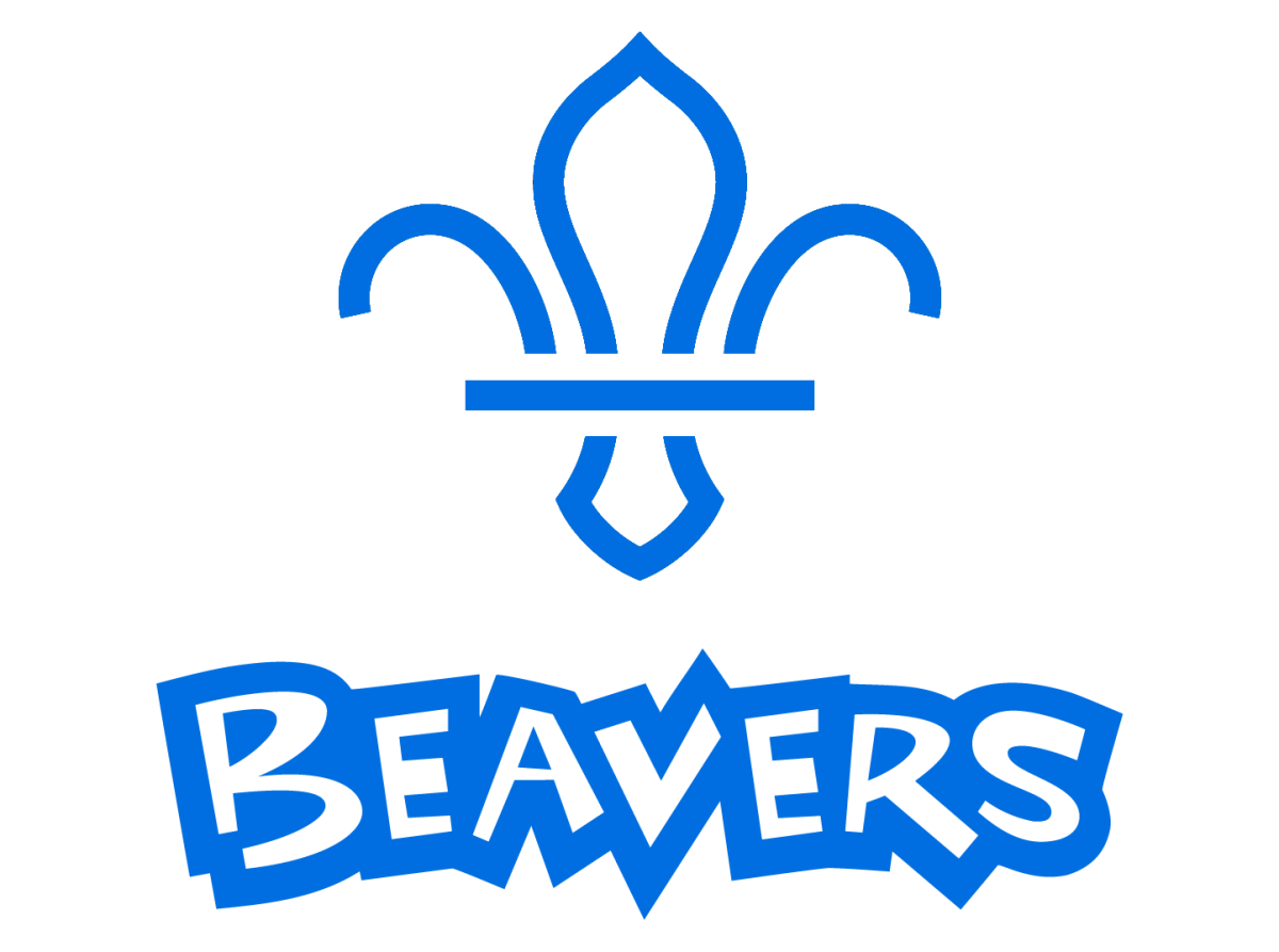 willerby scout group beaver