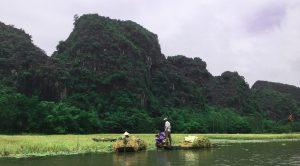 Rice Paddies Tam Coc