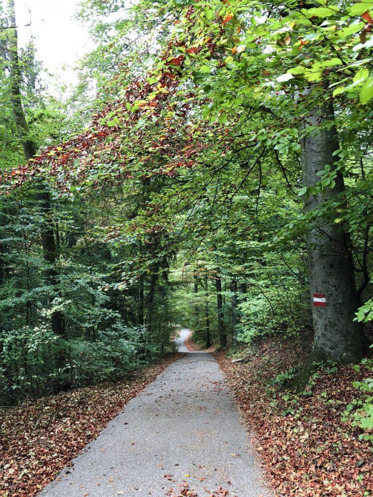 park Kapuzinerberg