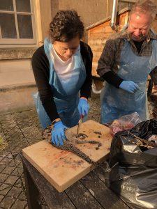 preparing pheasants
