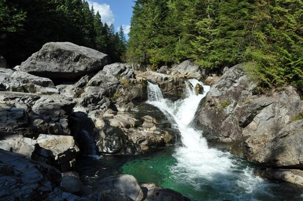 Widgeon Lake Trail Pinecone Burke Provincial Park