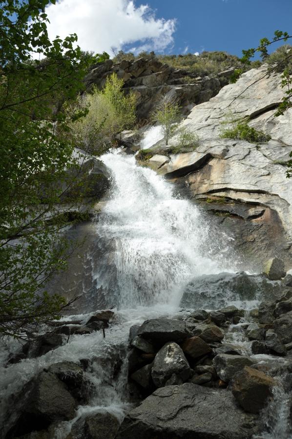 Lisa Falls  Little Cottonwood Canyon