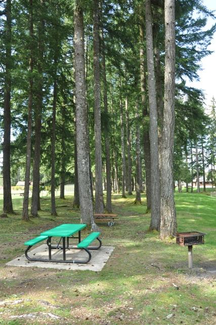 Callanan Park  Shelton Parks  Recreation