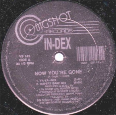 In-Dex - Now You're Gone [12'' Vinyl 1989 ]