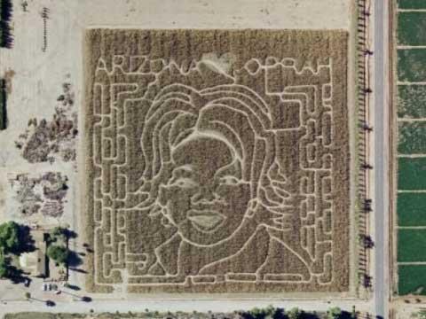 奧普拉迷宮