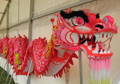 Dragons - chinese Festival Dragon