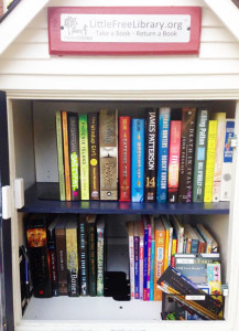 Thanksgiving 2015 Ambercrest-Little-Free-Library-Web