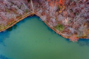 taking-to-the-skies-in-november-william-petruzzo03