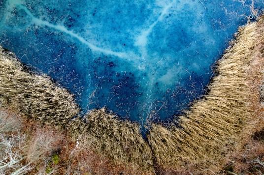 taking-to-the-skies-in-november-william-petruzzo13