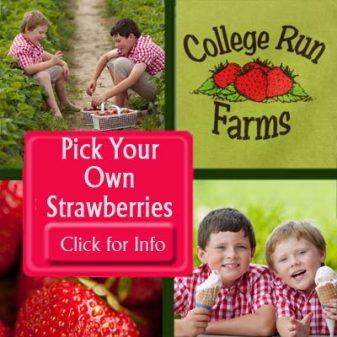college run farms