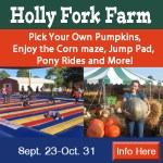 Holly Fork Farm Pumpkin Patch – Open Now