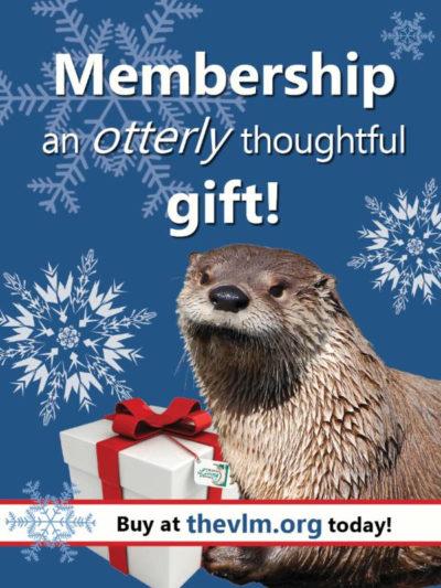 vlm membership