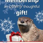 Give a MEMBERSHIP to the Virginia Living Museum - Save 20% on Cyber Monday - details: