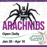 The Art & Science of Arachnids at Virginia Living Museum - Opens Jan. 20
