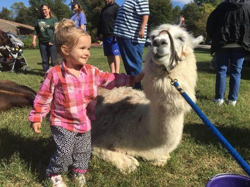 Teeny Tiny Petting Zoo - Spring Fling'