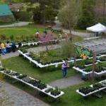 Annual Native Fall Plant Sale at Virginia Living Museum