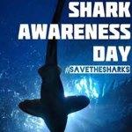 VLM Shark Awareness Day on July 13