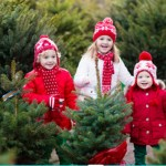 Christmas Tree Sale - Benefiting CDR at Bike the Burg!
