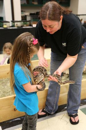 VLM Reptiles & Amphibians