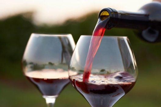 taste-studio-wine