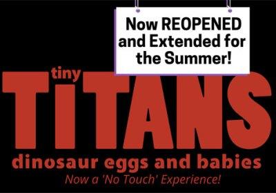 tiny titans vlm