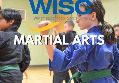 wisc martial arts williamsburg