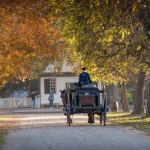 Colonial Williamsburg Ticket Discounts and Special Offers