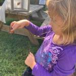 Bees, Butterflies & Birds at Virginia Living Museum on Oct 10th
