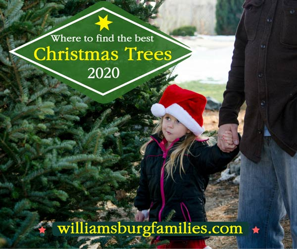 Where to buy a Christmas Tree in Williamsburg | Williamsburg Families