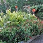 Williamsburg Botanical Garden Volunteer Interest Meeting