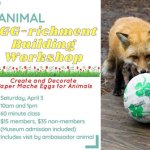"Animal ""EGGrichment"" workshop at VLM - Reserve your ticket today!"